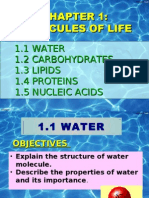 1.1 Water