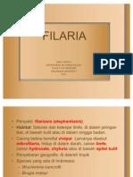 filaria-41