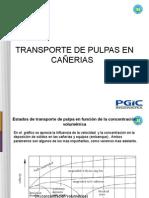 Informe Transporte de Pulpa PGIC