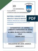 Proceso Adulto Mayor