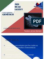20 Semanario de Alteraciones Cromosomicas Estructurales y Consejo Genetico