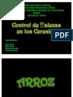 Control de Maleza en Cereales[1]