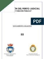 PERITO JUDICIAL, HAY FUNCIÓN PUBLICA