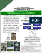 Poster da Requeima da Batata - Phytophthora Infestans