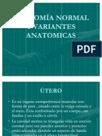 ANATOMÍA NORMAL Y VARIANTES ANATOMICAS