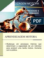 Aula I Aprendizagem e Performance Motora 1 - PDF