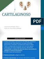 2-tecido cartilaginoso