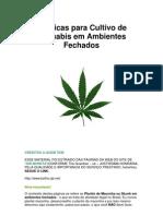 Técnicas para Cultivo de Cannabis em Ambientes Fechados