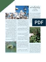 Precaution of Cultivating BT Cotton