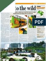 Into The Wild - Foz Do Iguacu