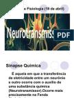 Neurotranmissores (Amanda)