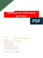 1-Transcription de Lin Formation Gntique
