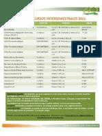 cursos_intersemestralesarqui