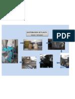 distribucion tortilleria