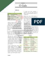 Jornal O Galo - 4ª Edição