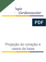 3oANO.semiO OLIVE 05. Semiologia Cardiovascular 10.04
