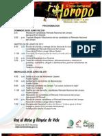 Programación 43 Torneo Internacional del Joropo