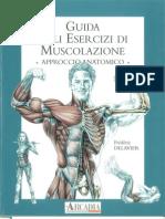 Guida agli esercizi di muscolazione - approccio anatomico