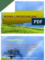 IV_RONA LINGKUNGAN