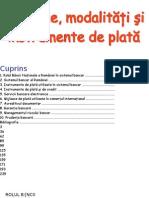 15894104-Mijloace-modaliti-i-instrumente-de-plat(1)