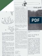 Getij geeft ruimte voor de vegetatie in het Rijn-Maasestuarium