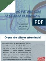 Células Estaminais I