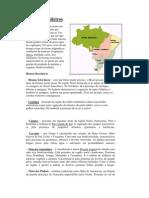 Biomas Brasileiros2