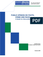 SOLER Public Opinion on Youth, Crime, And Race a Guide for Advocates