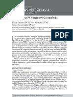 Hepatitis Infecciosa Canino