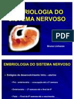 Embriologia Do Sistema Nervoso