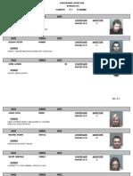 06-06-11 Montgomery County VA Jail Booking Info (photos)
