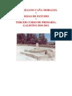 Hojas de Estudio. Tercer Curso de Primaria. Galisteo 2010-2011