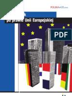 Prawo Europejskie Internet MSZ A