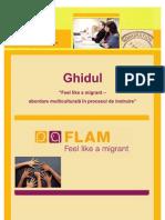 Ghidul Feel like a migrant - abordare multiculturala in procesul de instruire