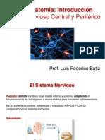 1 Batiz Neuroanatomia Intro SNCyP