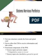 2-Batiz-Neuroanatomia-SNP
