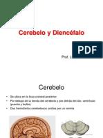 4-Batiz-Neuroanatomia-Cerebelo-Diencéfalo