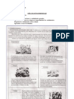 Guia DPS 1 Blog