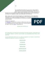 Consulta de Quimica de Los Principios Inmediatos