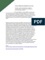 MMP resumen