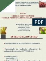 WS.minicurso_fotossintese
