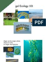 Algal Ecology 101