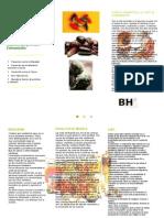 folleto Buenas Hierbas