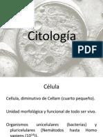 Citología..