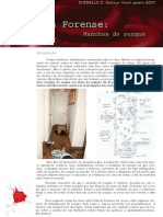 2007jan_forense2