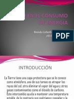 Tutorias PDF
