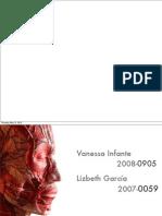 Anatomía de los Músculos Faciales