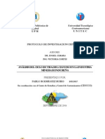 Proyecto de Investigacion Acv Cianuro Pablo Rodriguez