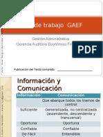 Plan de Trabajo GAEF