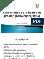 Aplicaciones de la bomba de presión (Scholander